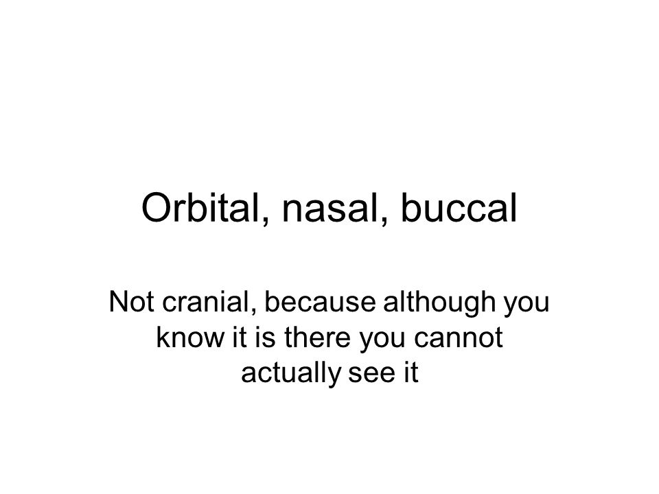 Orbital, nasal, buccal Not cranial, because although you know it is there you cannot actually see it.