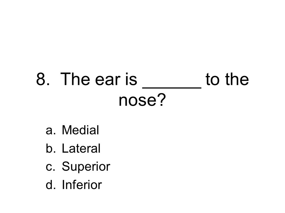 8. The ear is ______ to the nose