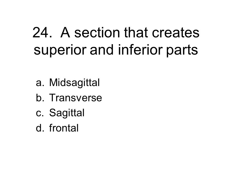 24. A section that creates superior and inferior parts