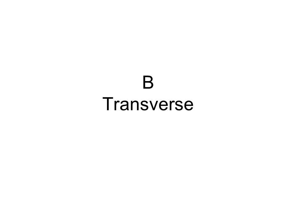 B Transverse