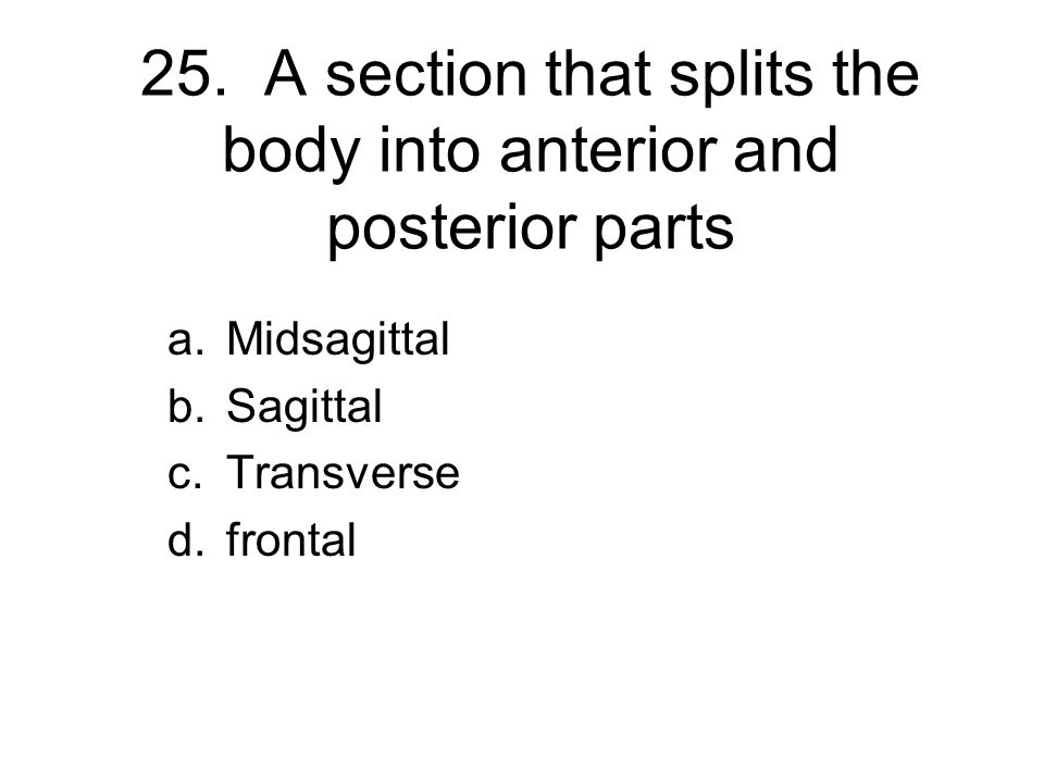 25. A section that splits the body into anterior and posterior parts