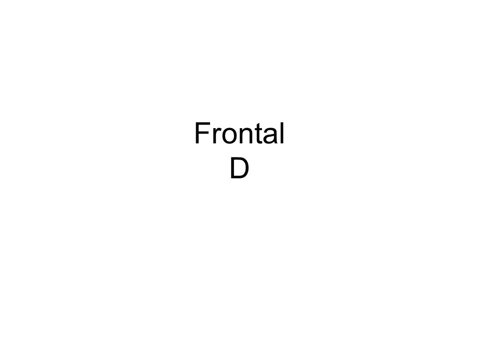 Frontal D