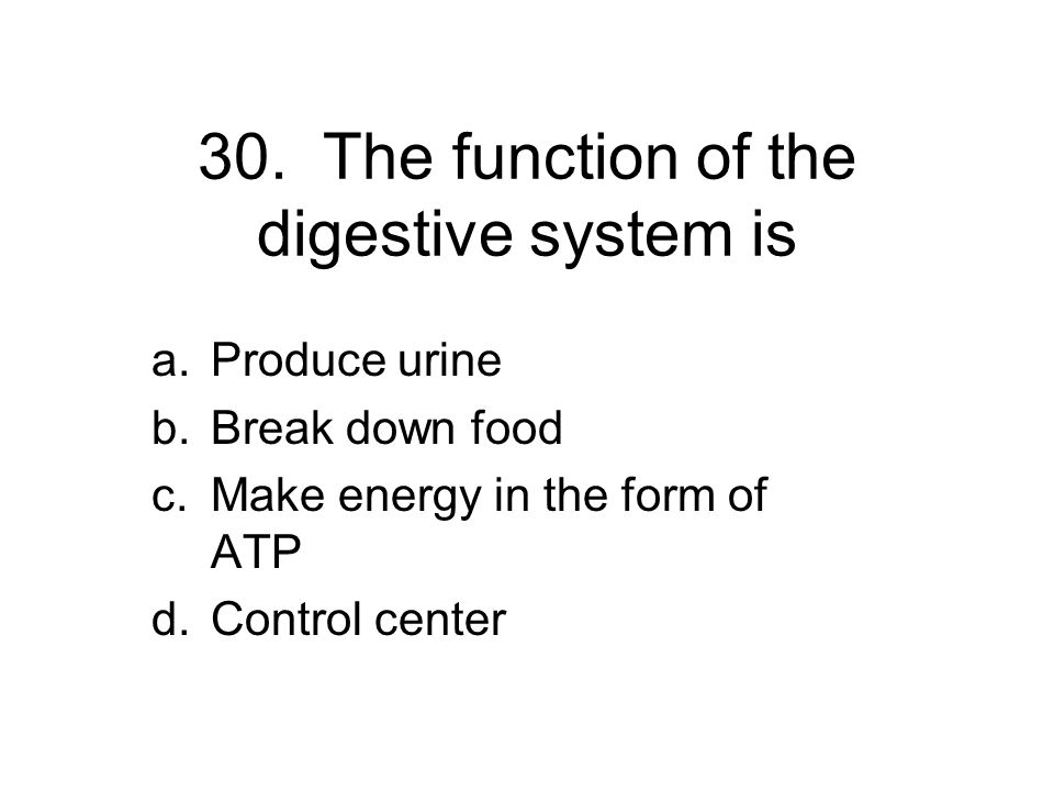 30. The function of the digestive system is