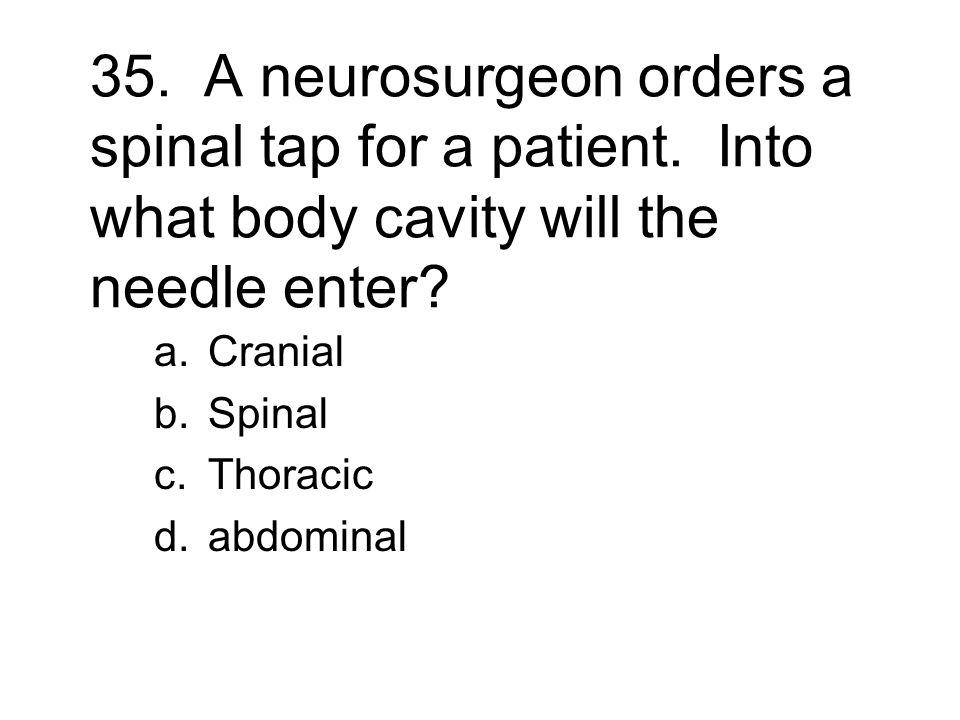 Cranial Spinal Thoracic abdominal