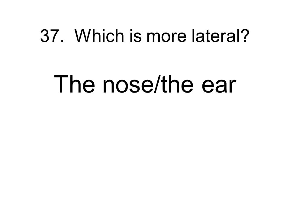 37. Which is more lateral The nose/the ear