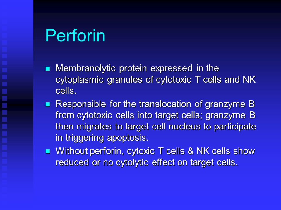 Perforin Membranolytic protein expressed in the cytoplasmic granules of cytotoxic T cells and NK cells.
