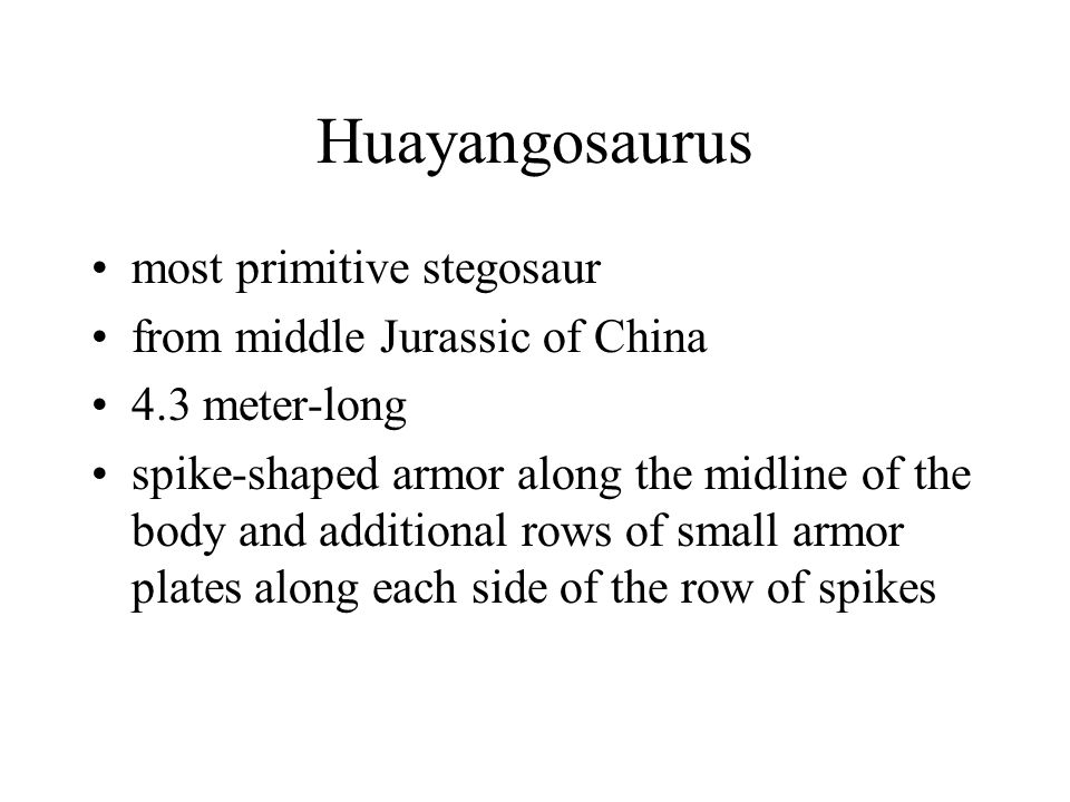 Huayangosaurus most primitive stegosaur from middle Jurassic of China
