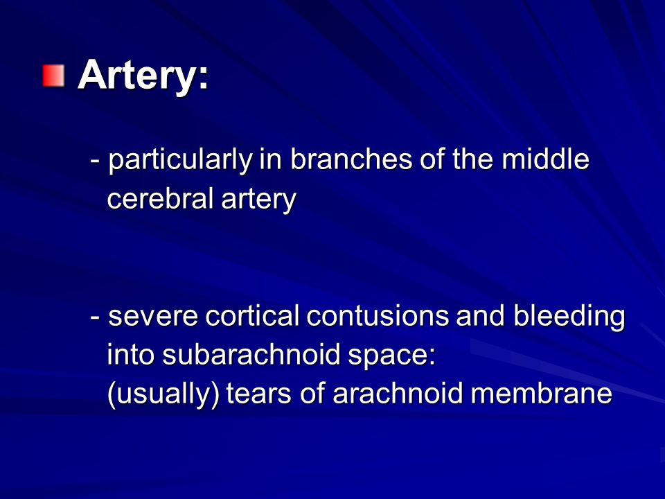 Artery: - particularly in branches of the middle cerebral artery