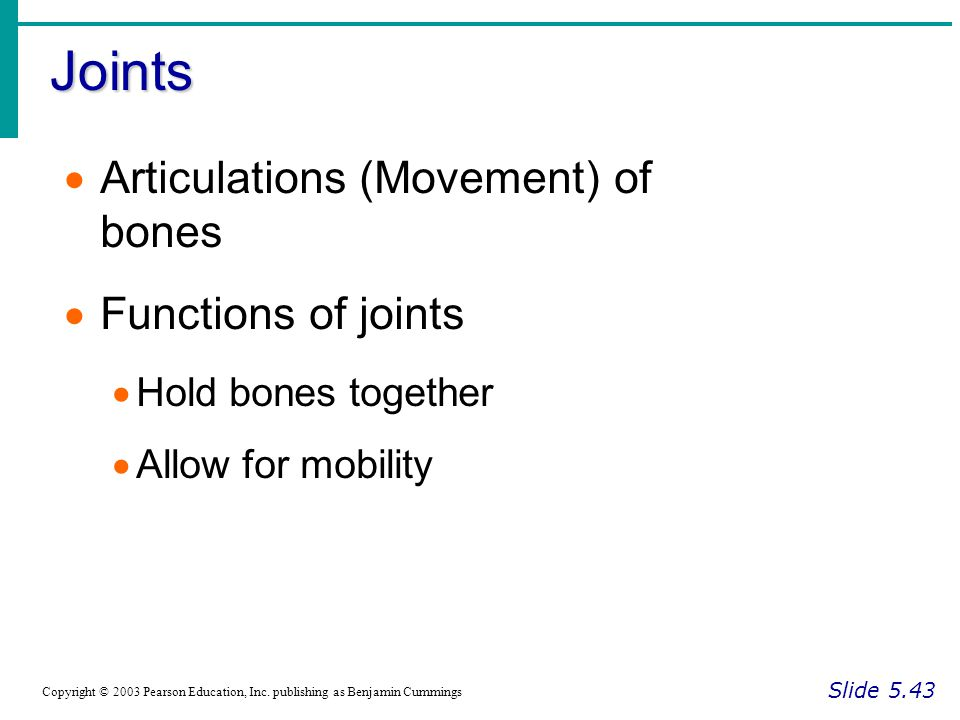 Joints Articulations (Movement) of bones Functions of joints