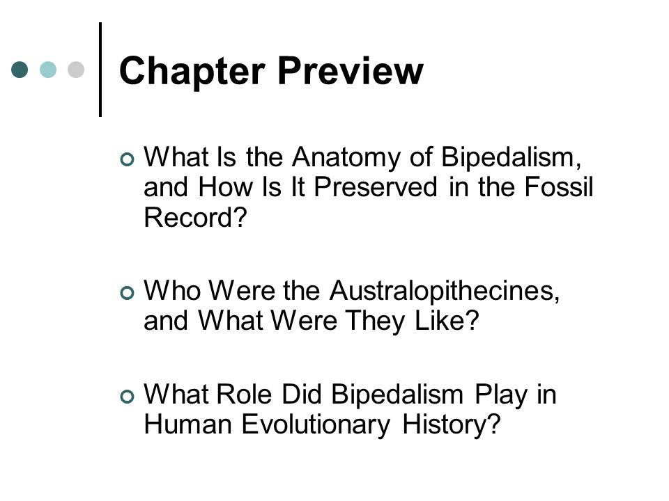 Chapter Preview What Is the Anatomy of Bipedalism, and How Is It Preserved in the Fossil Record