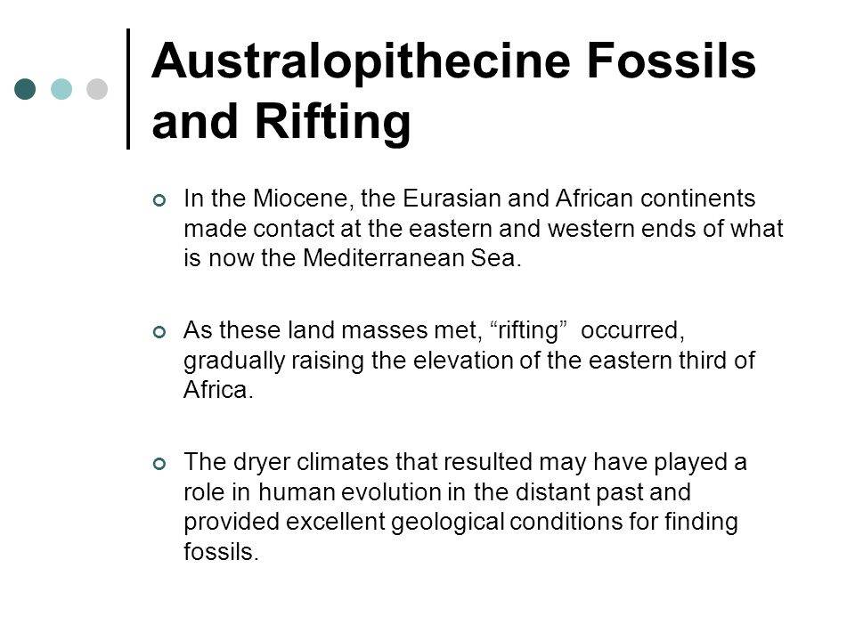 Australopithecine Fossils and Rifting