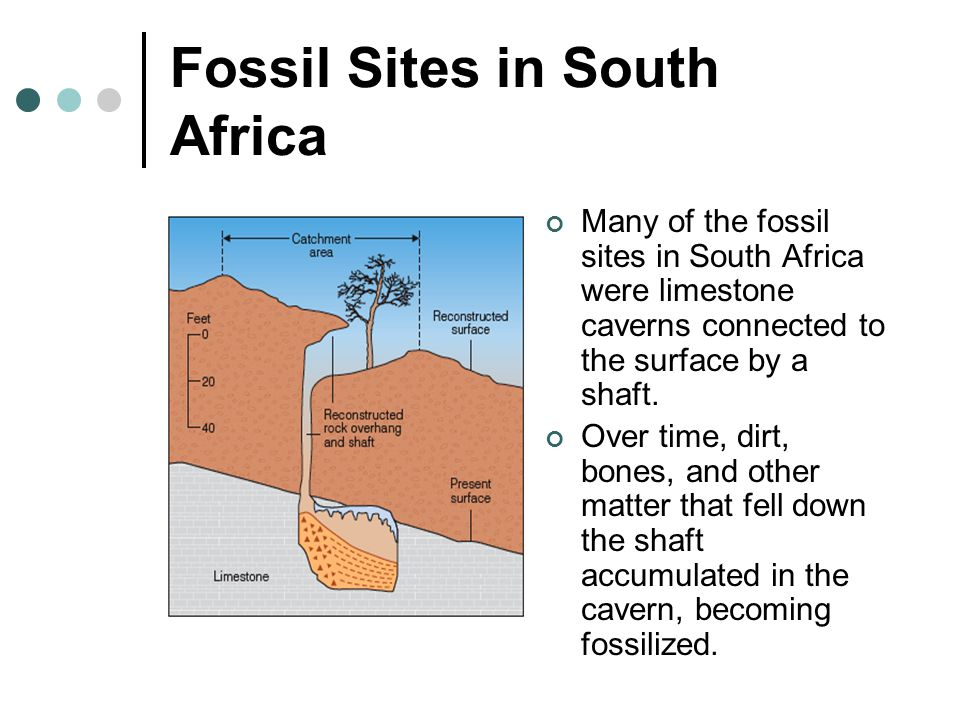 Fossil Sites in South Africa