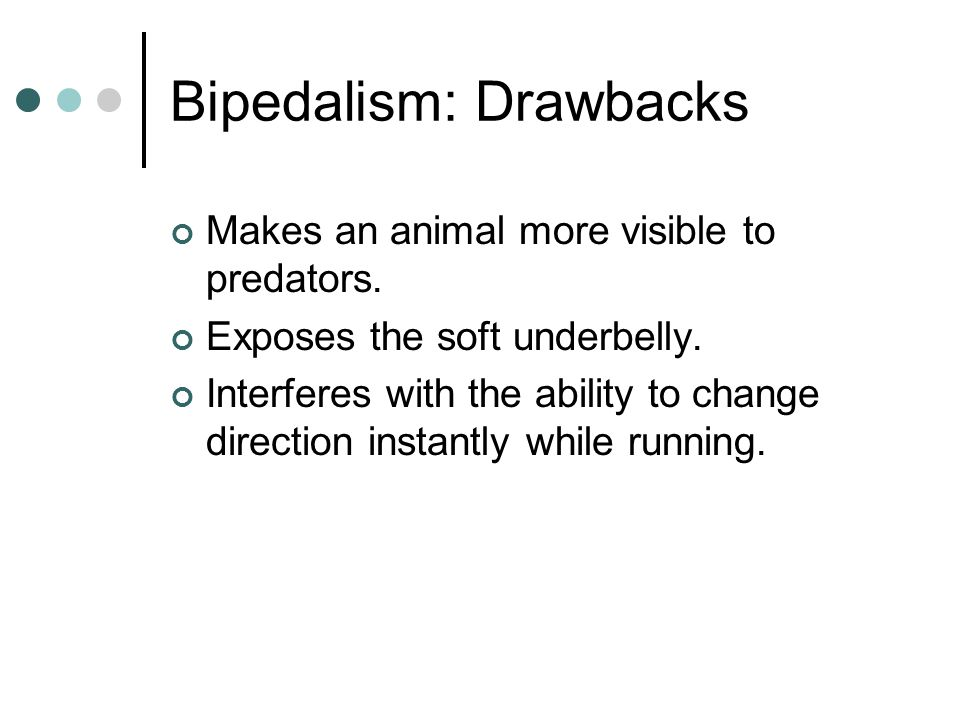 Bipedalism: Drawbacks