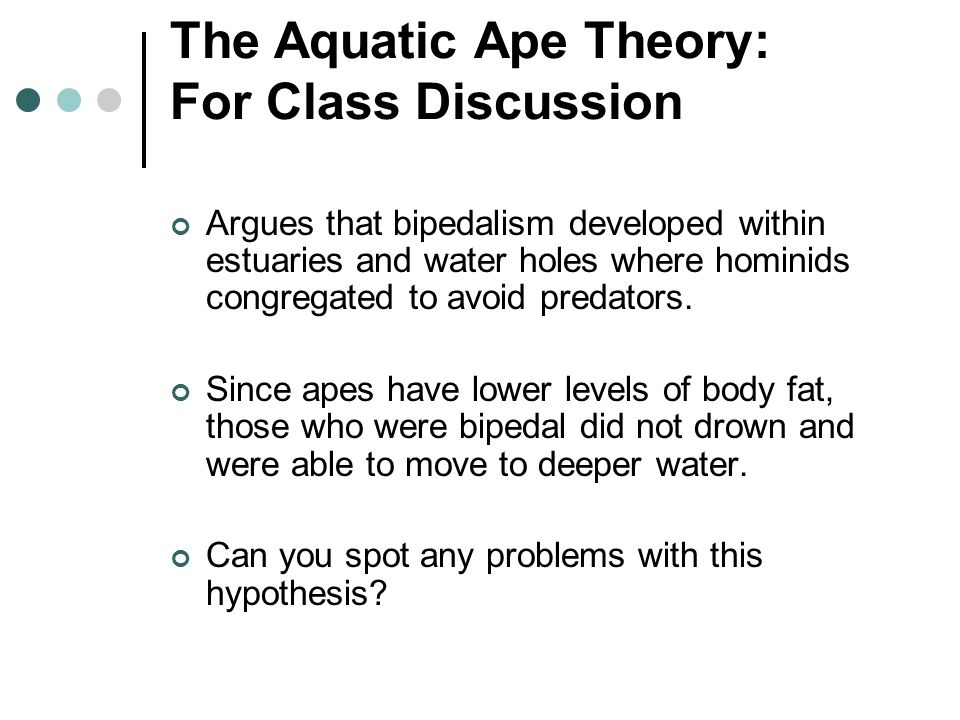 The Aquatic Ape Theory: For Class Discussion