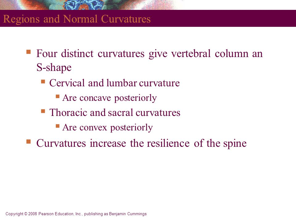 Regions and Normal Curvatures