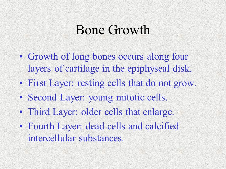 Bone Growth Growth of long bones occurs along four layers of cartilage in the epiphyseal disk. First Layer: resting cells that do not grow.