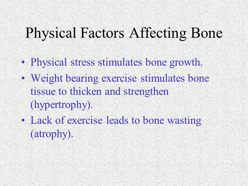 Physical Factors Affecting Bone