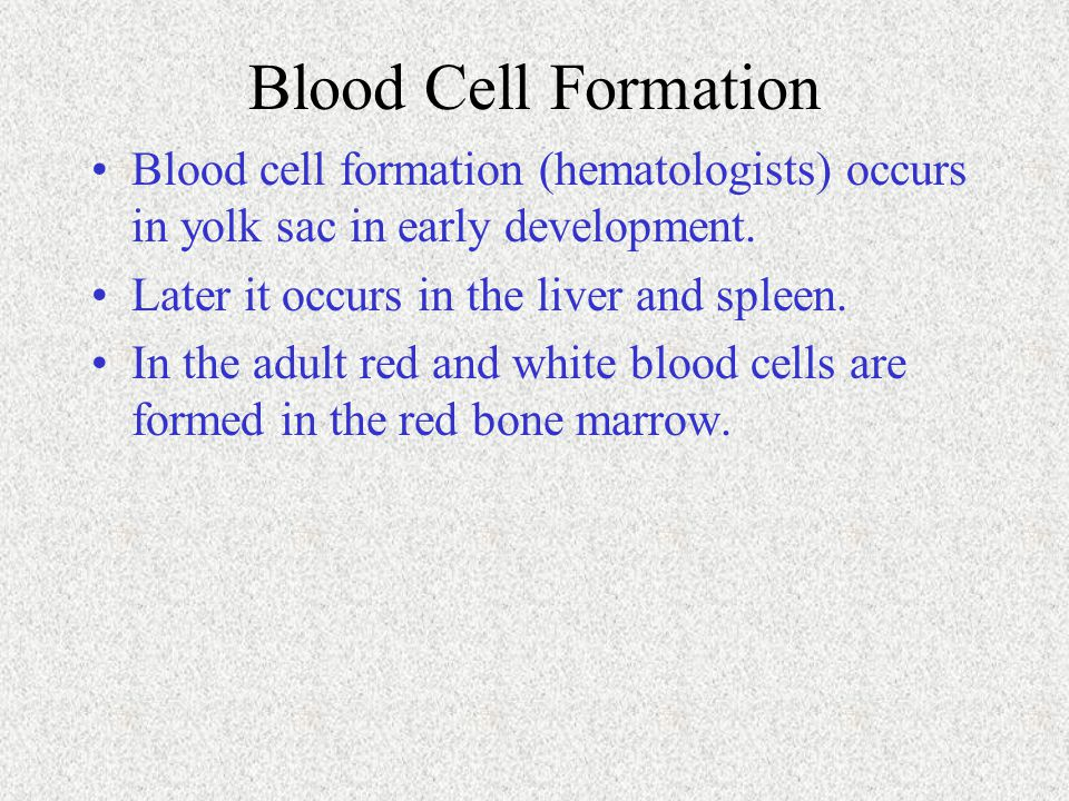 Blood Cell Formation Blood cell formation (hematologists) occurs in yolk sac in early development. Later it occurs in the liver and spleen.