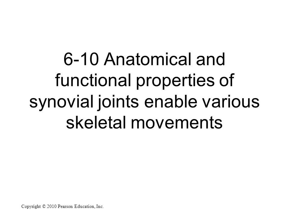 6-10 Anatomical and functional properties of synovial joints enable various skeletal movements