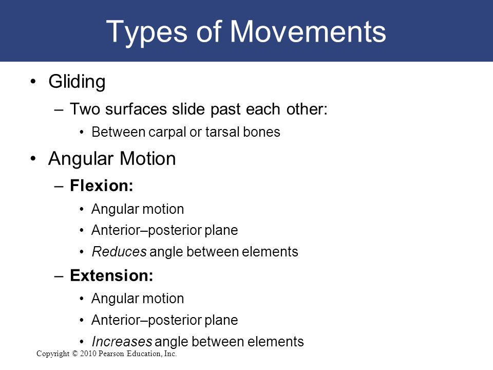 Types of Movements Gliding Angular Motion