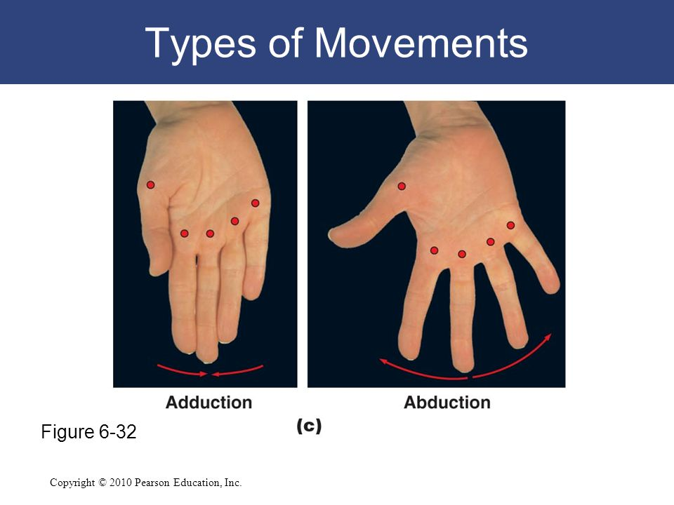 Types of Movements Figure 6-32