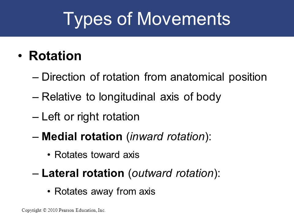 Types of Movements Rotation