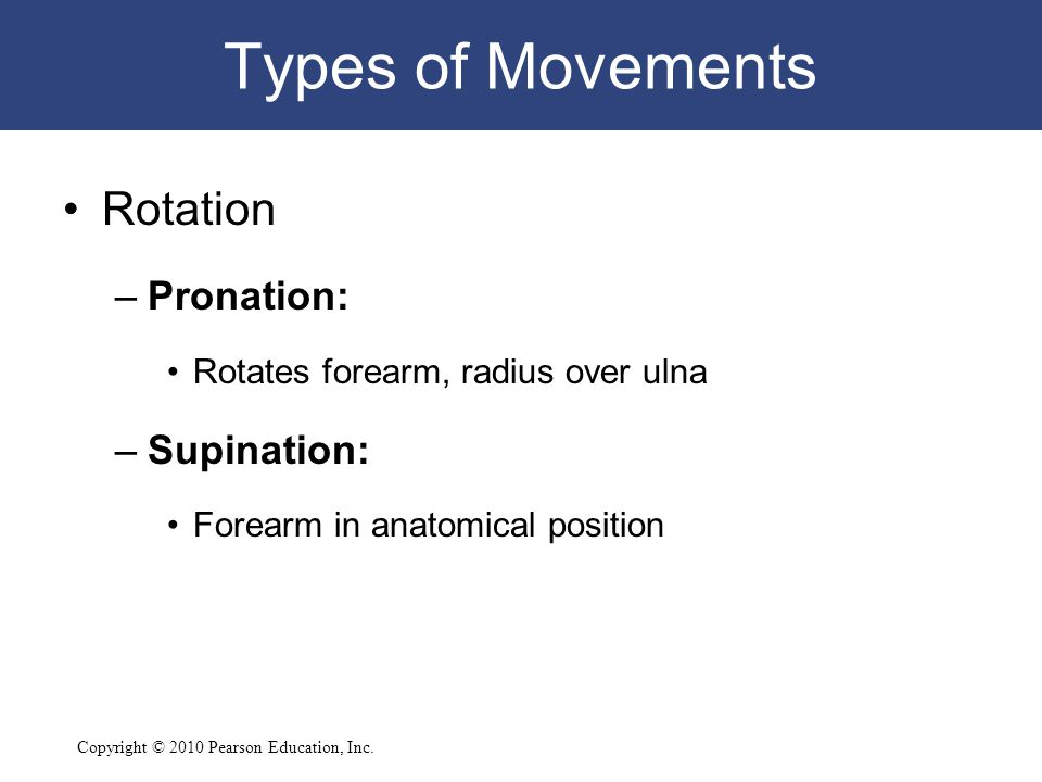 Types of Movements Rotation Pronation: Supination: