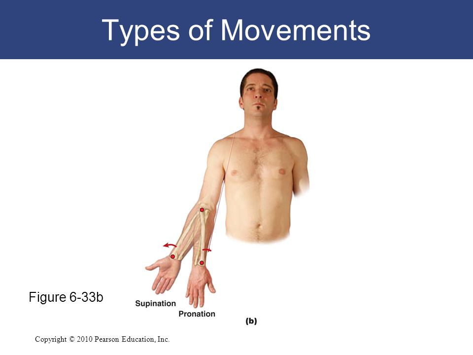Types of Movements Figure 6-33b
