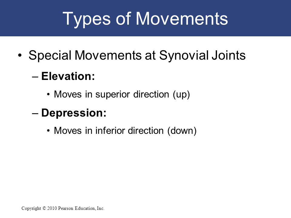 Types of Movements Special Movements at Synovial Joints Elevation: