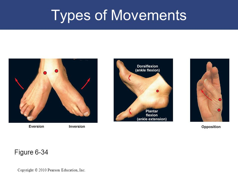 Types of Movements Figure 6-34