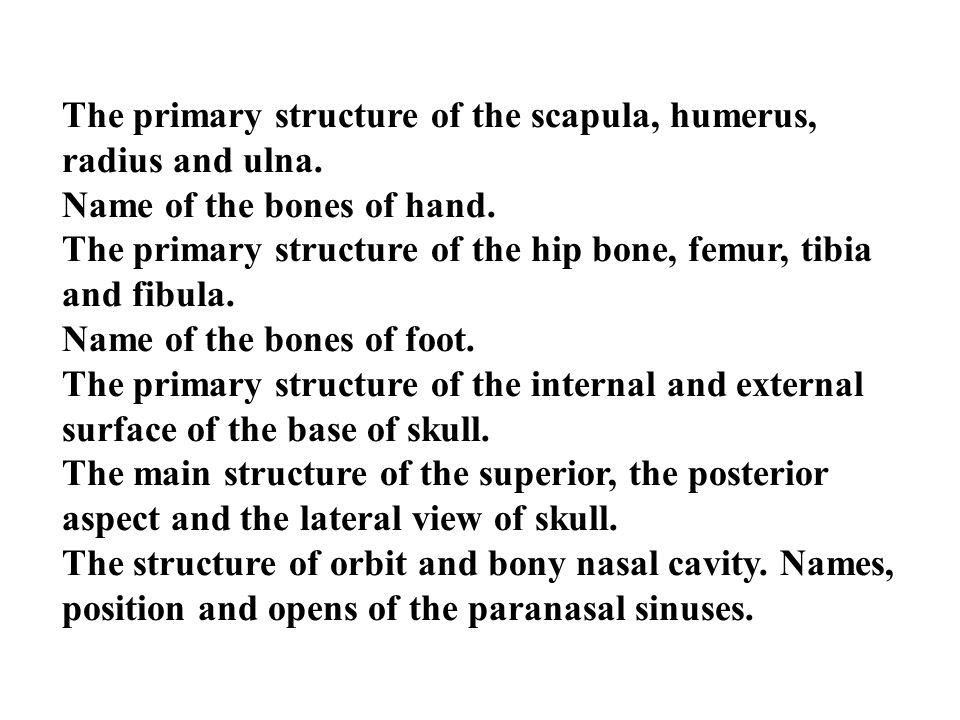 The primary structure of the scapula, humerus, radius and ulna.