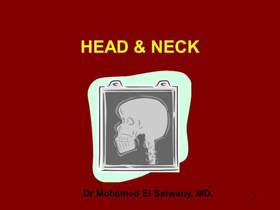 Dr Mohamed El Safwany, MD.