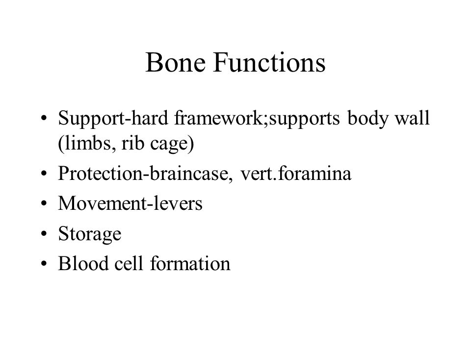 Bone Functions Support-hard framework;supports body wall (limbs, rib cage) Protection-braincase, vert.foramina.