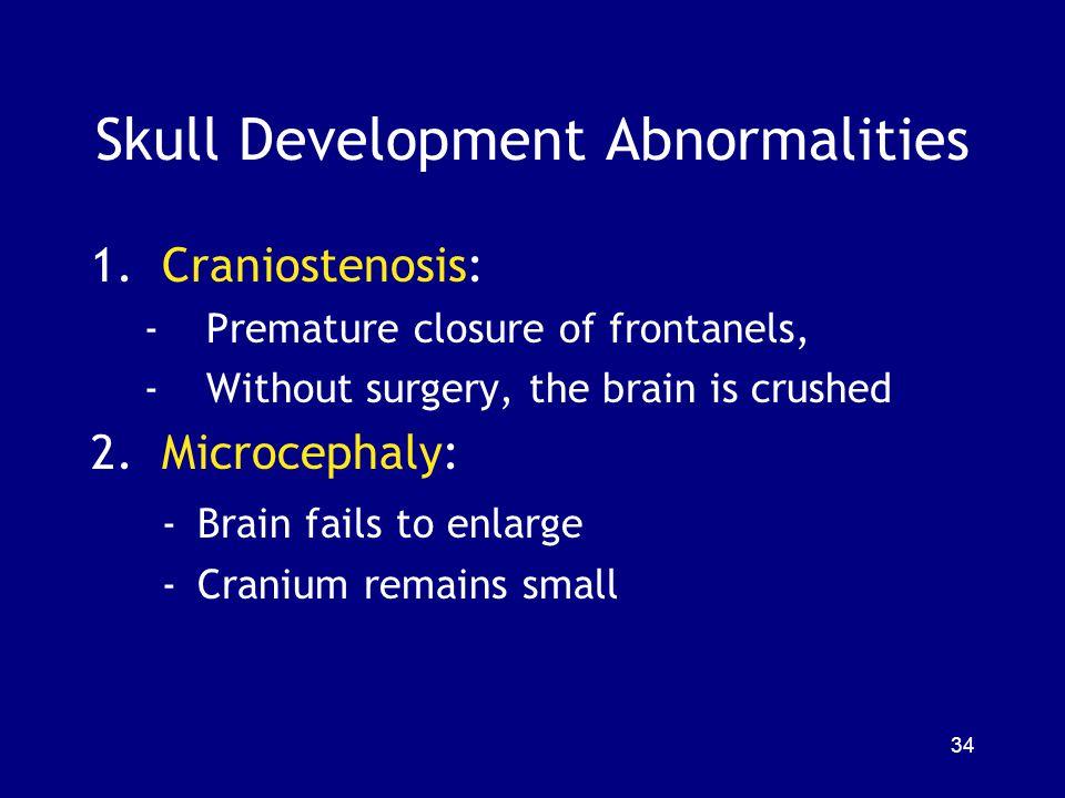 Skull Development Abnormalities