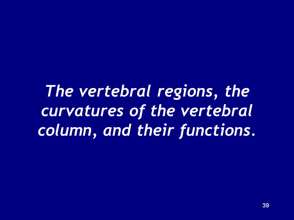 The vertebral regions, the curvatures of the vertebral column, and their functions.