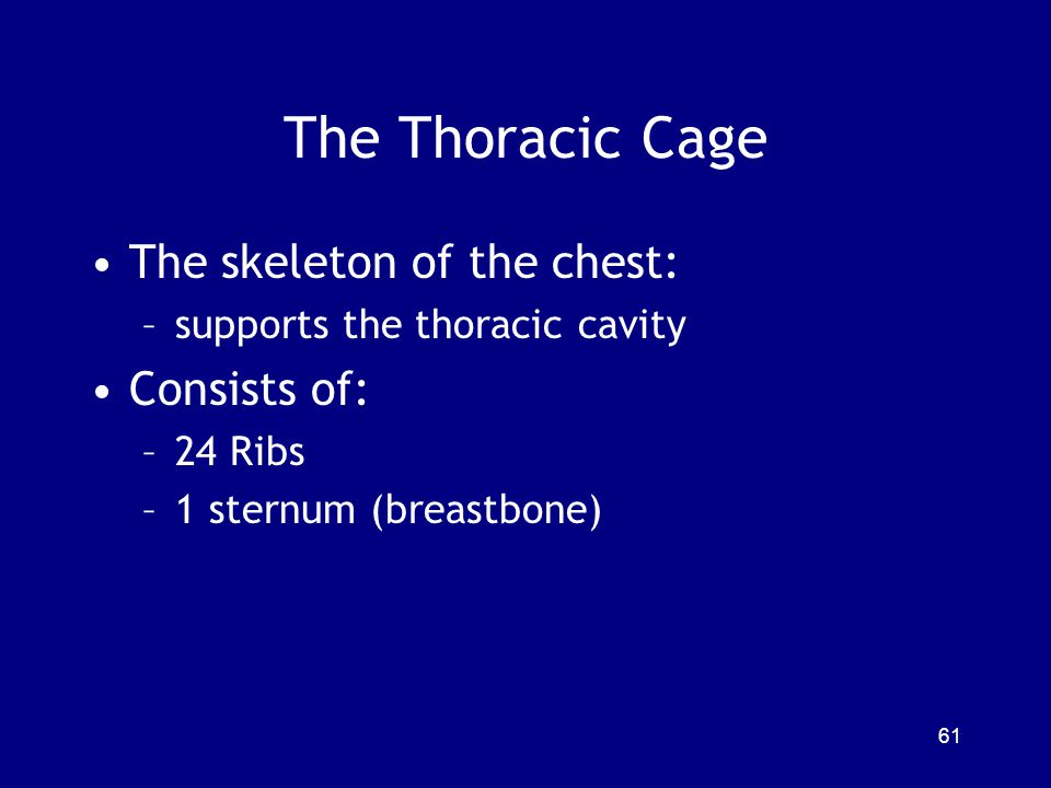 The Thoracic Cage The skeleton of the chest: Consists of: