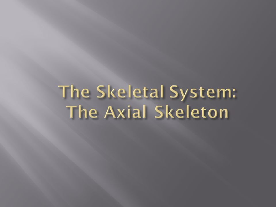 The Skeletal System: The Axial Skeleton