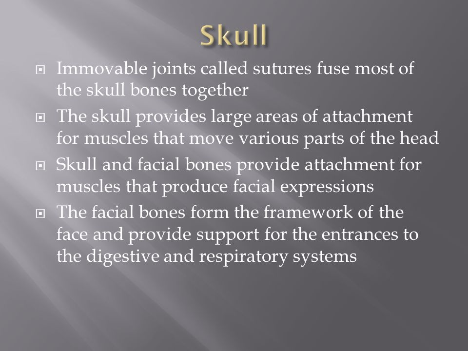 Skull Immovable joints called sutures fuse most of the skull bones together.