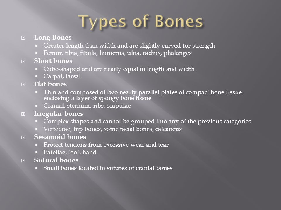 Types of Bones Long Bones Short bones Flat bones Irregular bones
