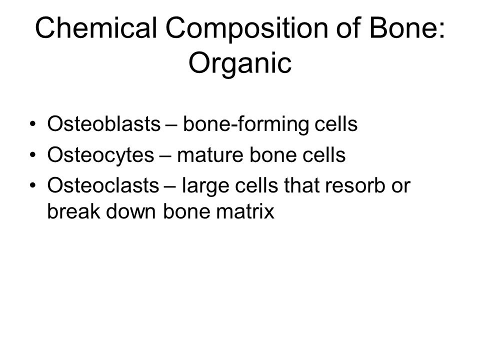 Chemical Composition of Bone: Organic
