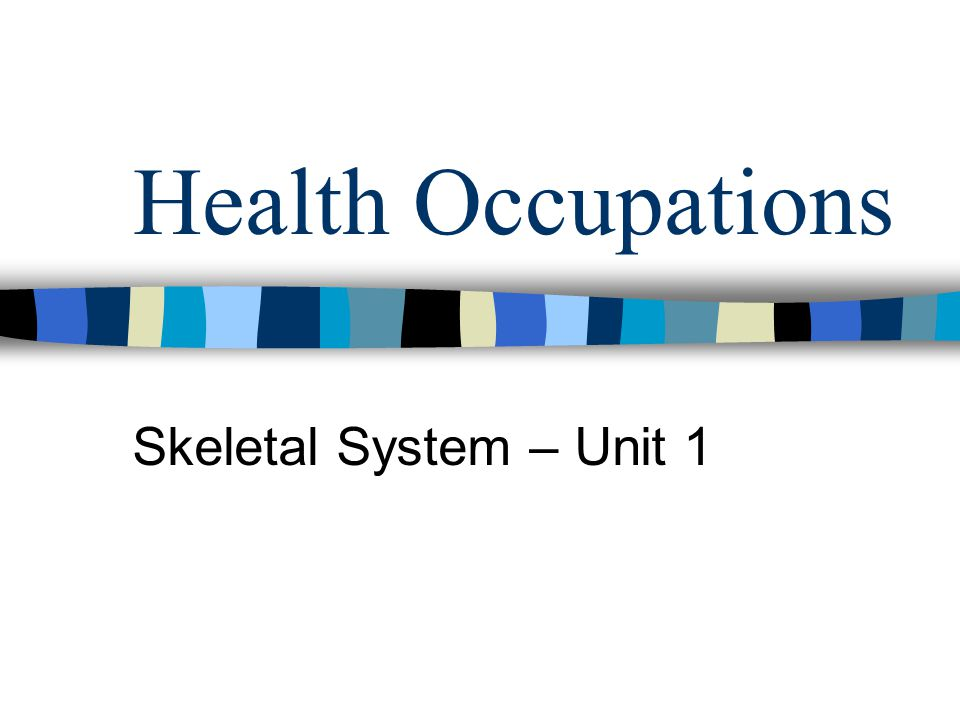 Health Occupations Skeletal System – Unit 1