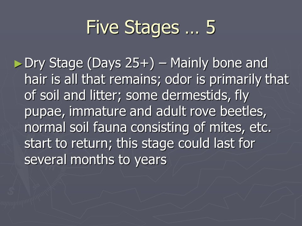 Five Stages … 5