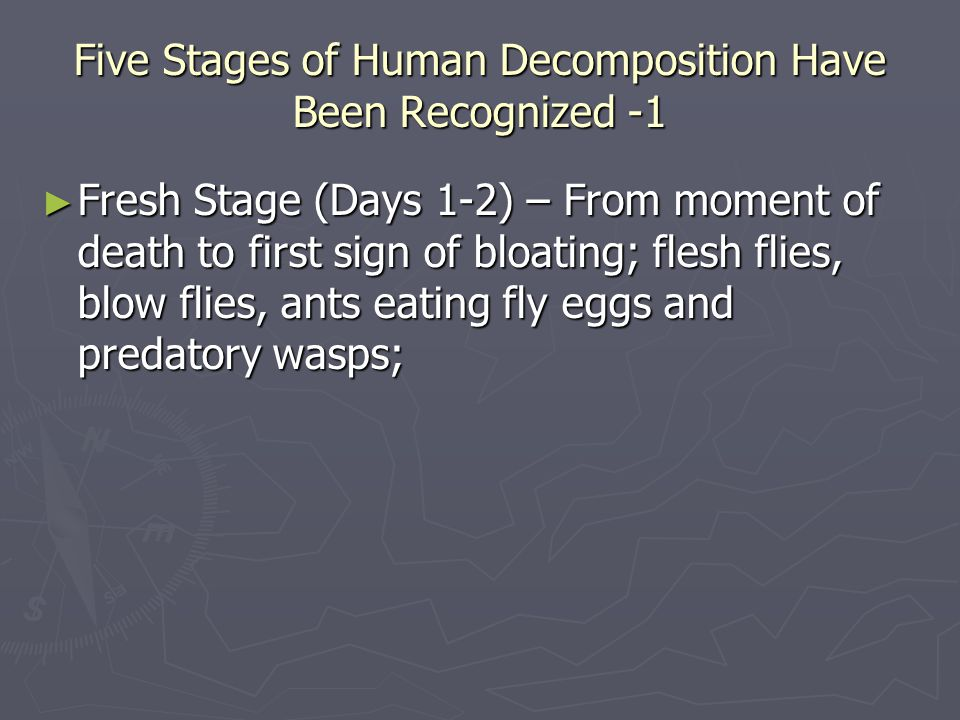 Five Stages of Human Decomposition Have Been Recognized -1