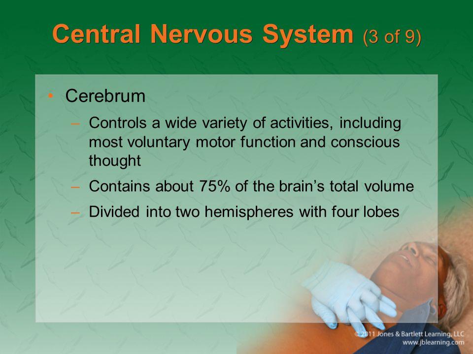 Central Nervous System (3 of 9)