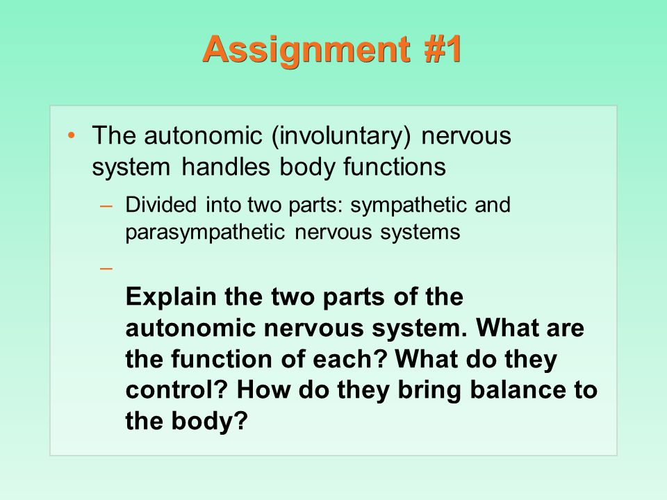 Assignment #1 The autonomic (involuntary) nervous system handles body functions.