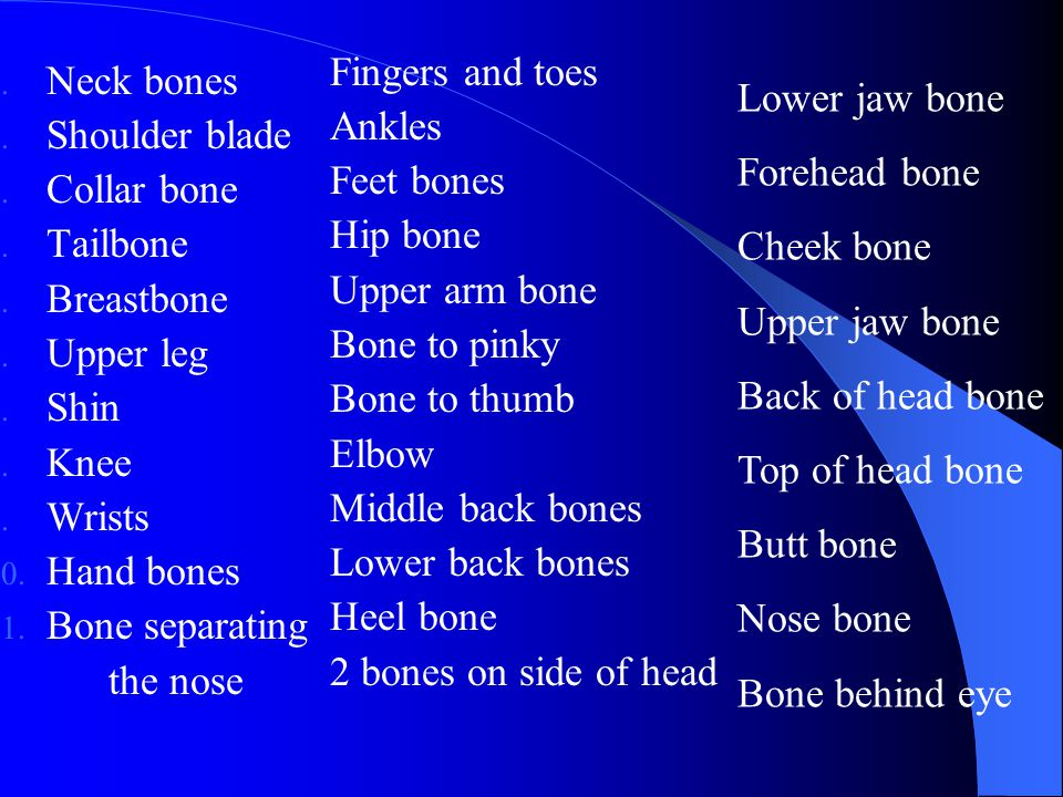 Fingers and toes Ankles. Feet bones. Hip bone. Upper arm bone. Bone to pinky. Bone to thumb. Elbow.