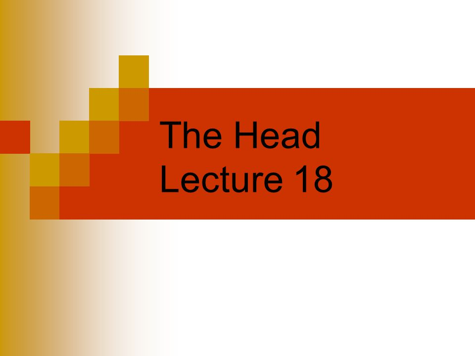 The Head Lecture 18