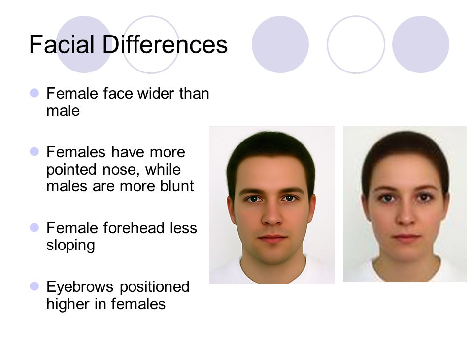 Facial Differences Female face wider than male