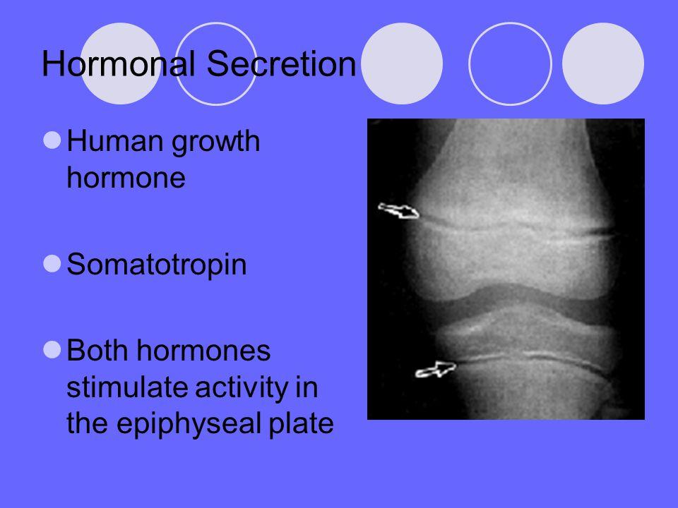 Hormonal Secretion Human growth hormone Somatotropin