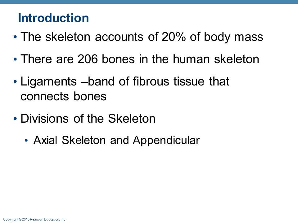 The skeleton accounts of 20% of body mass